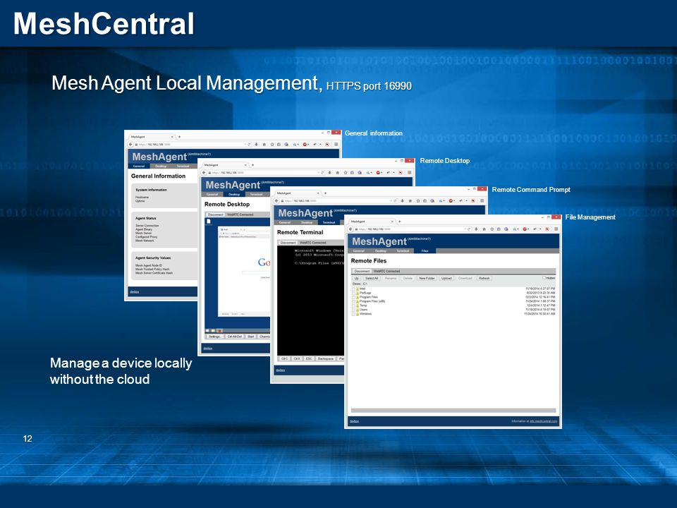 Mesh Agent Local Management, HTTPS port 16990