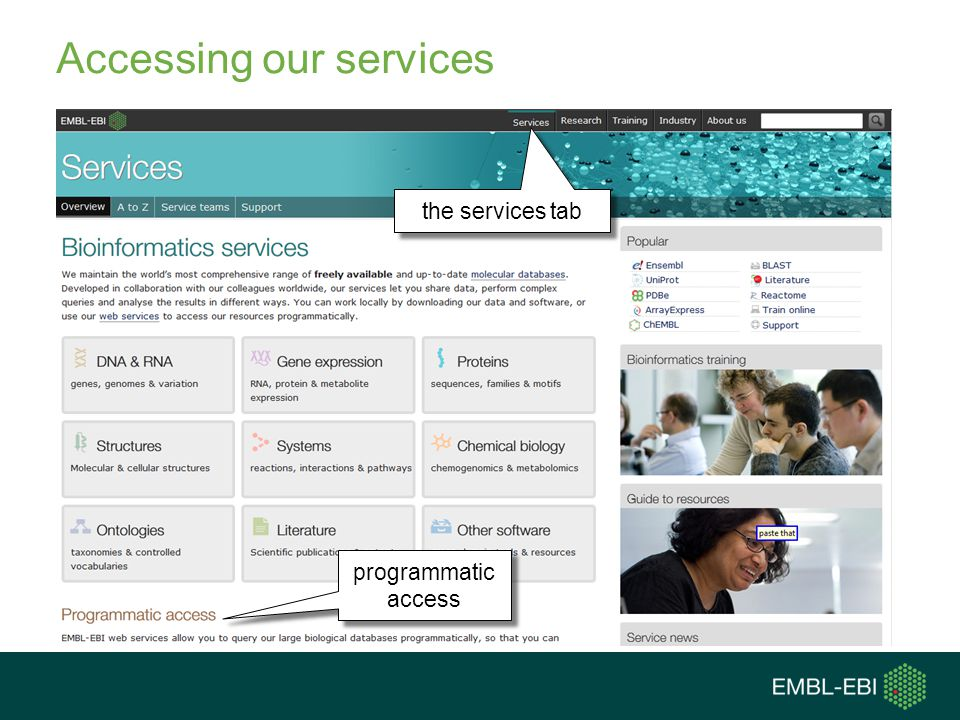 Accessing our services