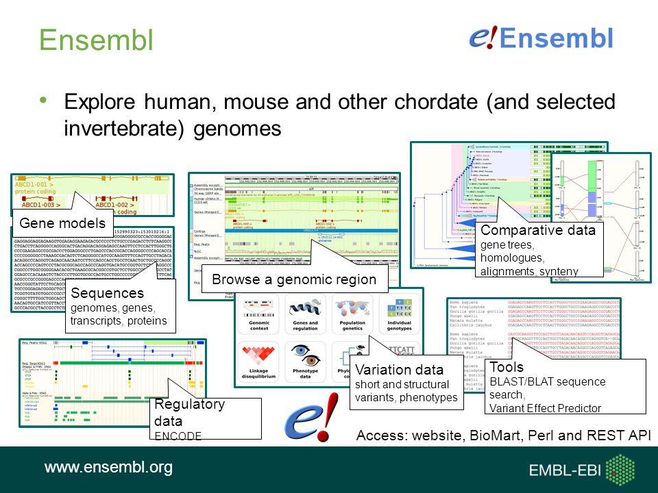 Browse a genomic region