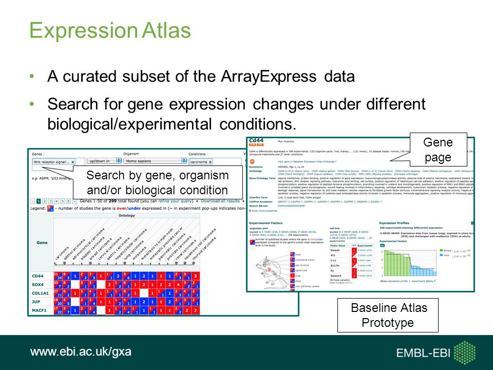 Expression Atlas A curated subset of the ArrayExpress data