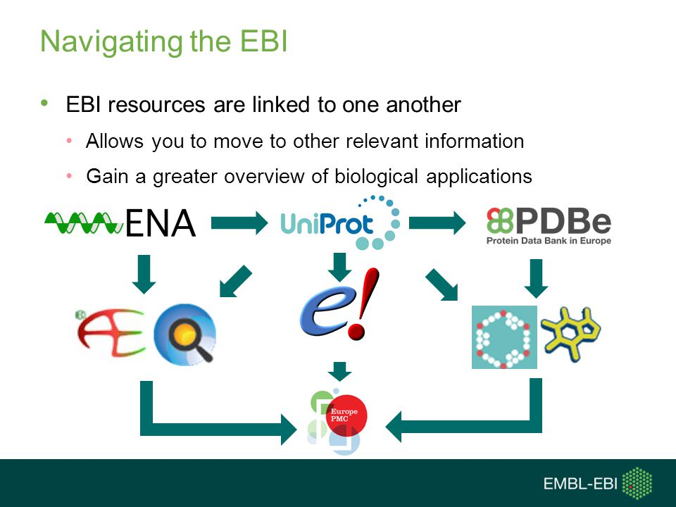 Navigating the EBI EBI resources are linked to one another
