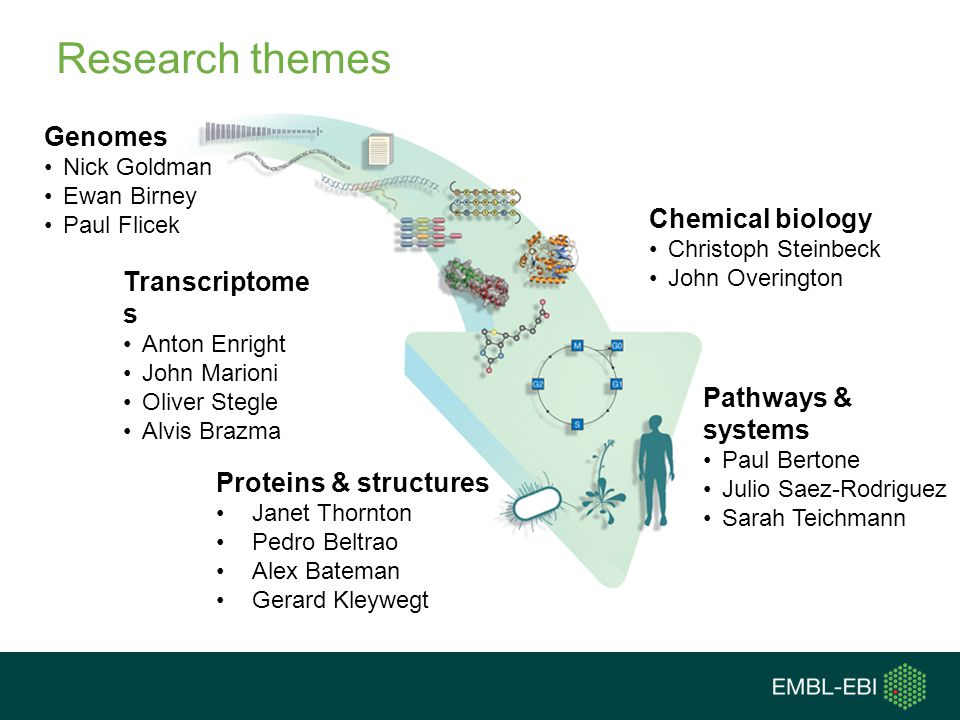 Research themes Genomes Chemical biology Transcriptomes