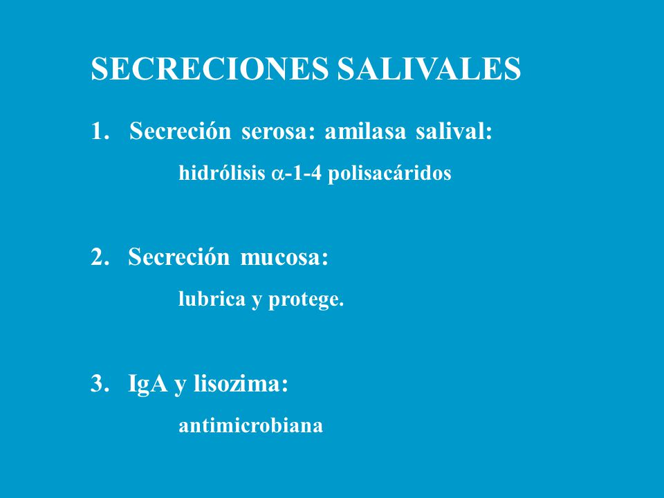 SECRECIONES SALIVALES 1. Secreción serosa: amilasa salival: