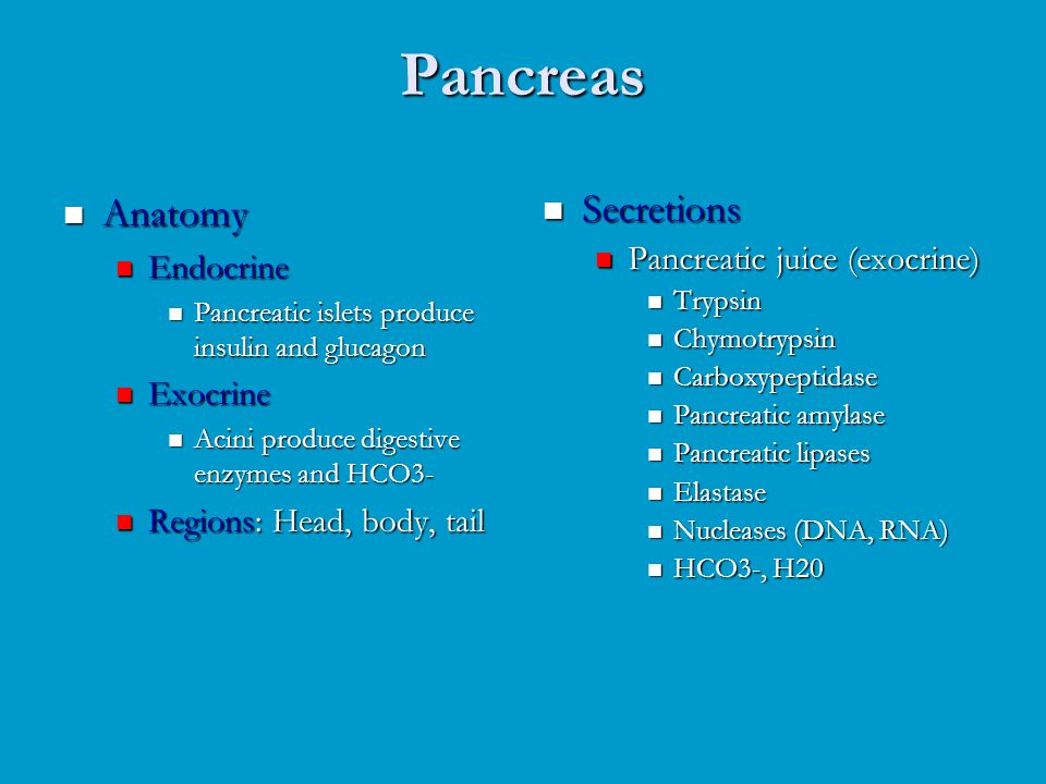 Pancreas Anatomy Secretions Endocrine Pancreatic juice (exocrine)