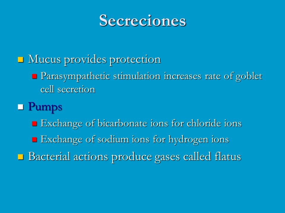 Secreciones Mucus provides protection Pumps