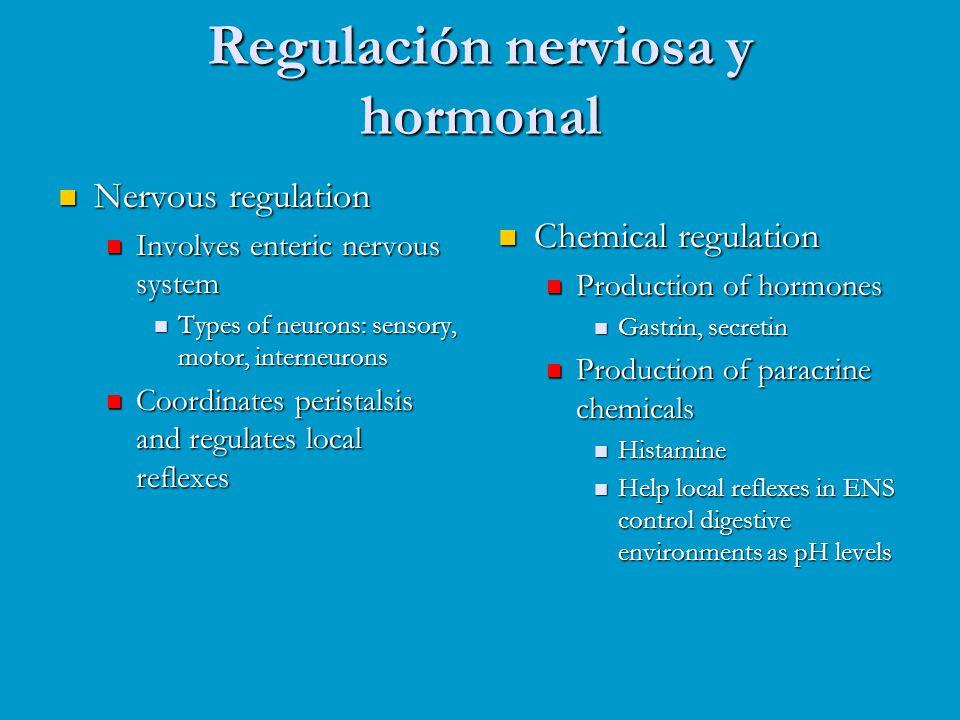 Regulación nerviosa y hormonal