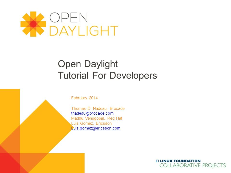 Open Daylight Tutorial For Developers