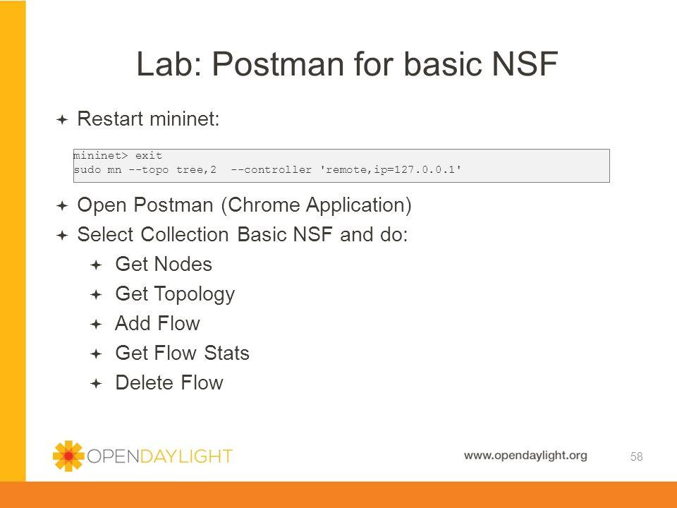 Lab: Postman for basic NSF