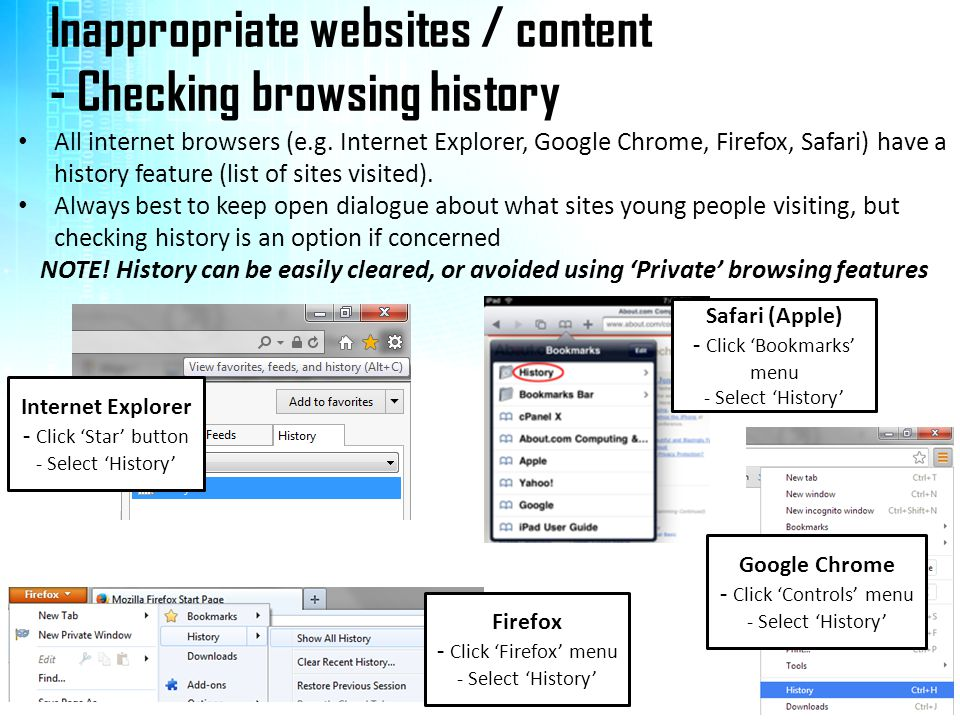 Inappropriate websites / content - Checking browsing history