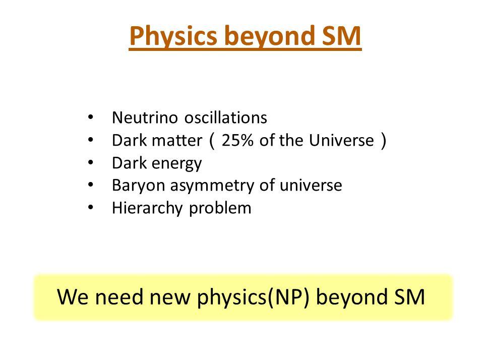 Physics beyond SM We need new physics(NP) beyond SM