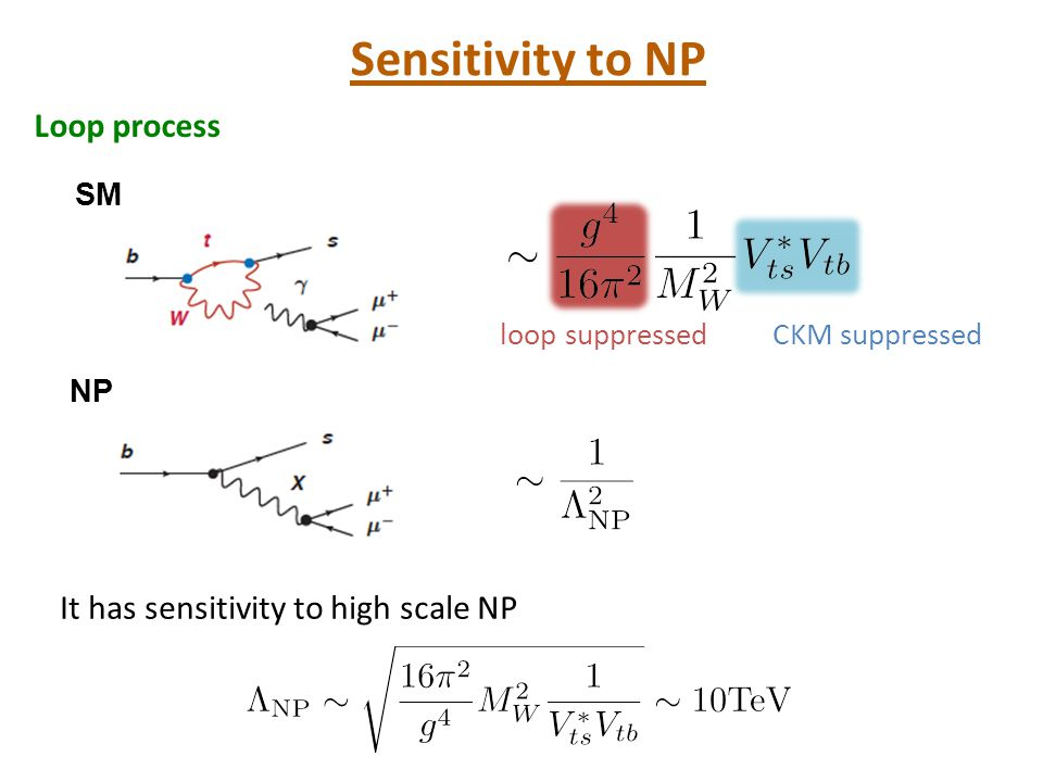 NPへの感度 Sensitivity to NP Loop process