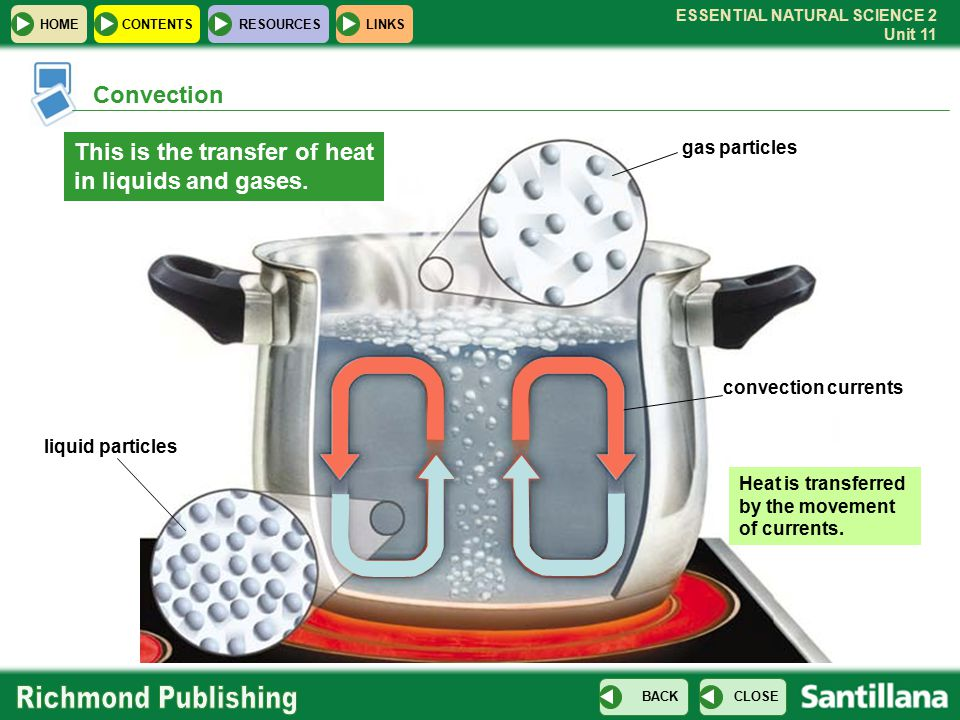 This is the transfer of heat in liquids and gases.