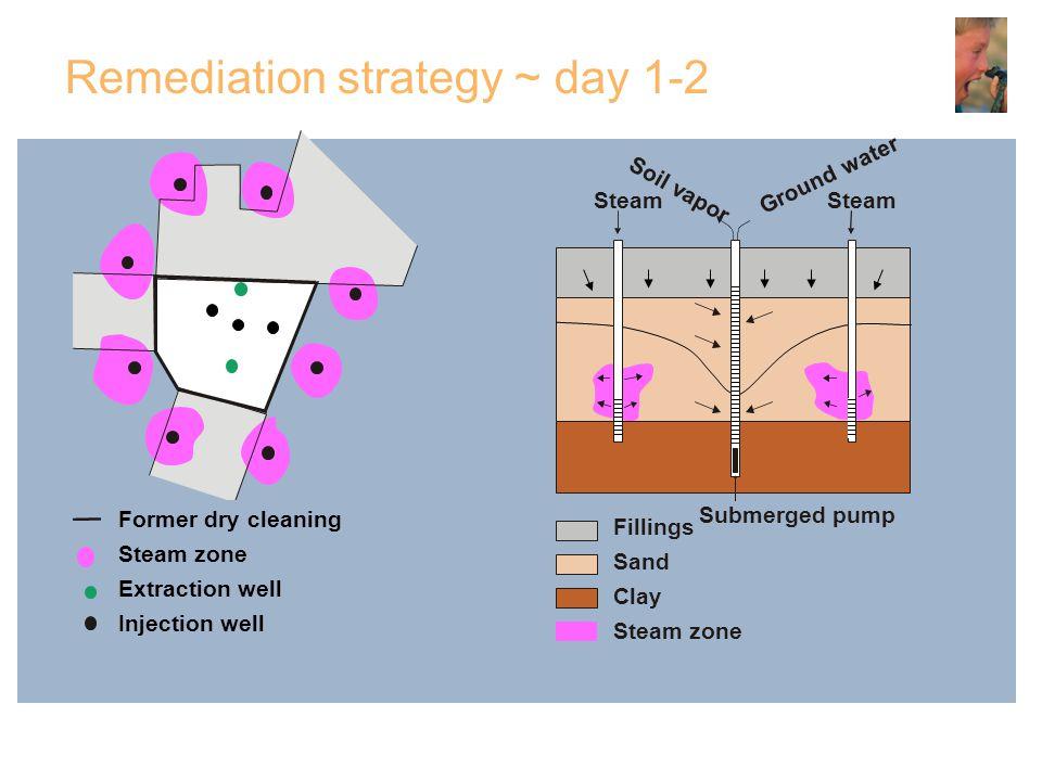 Remediation strategy ~ day 1-2