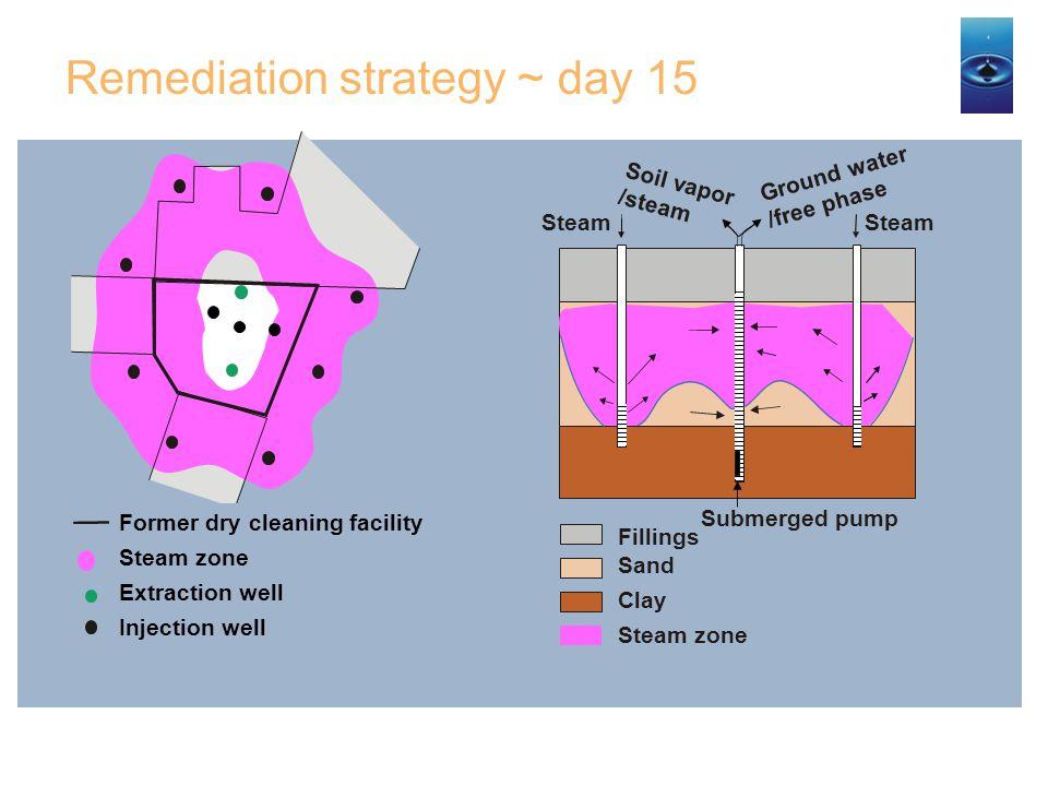 Remediation strategy ~ day 15