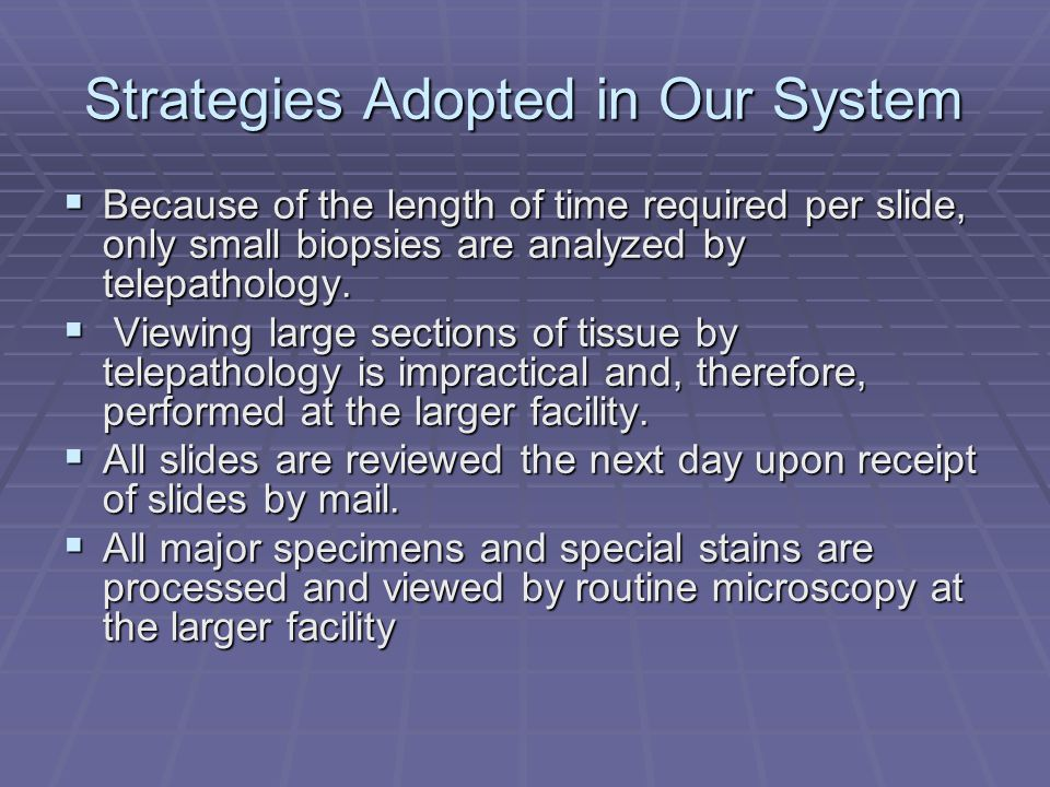Strategies Adopted in Our System