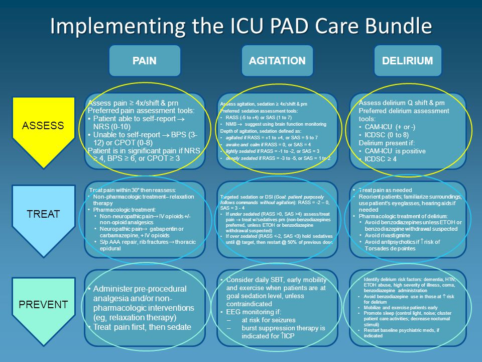 Implementing the ICU PAD Care Bundle