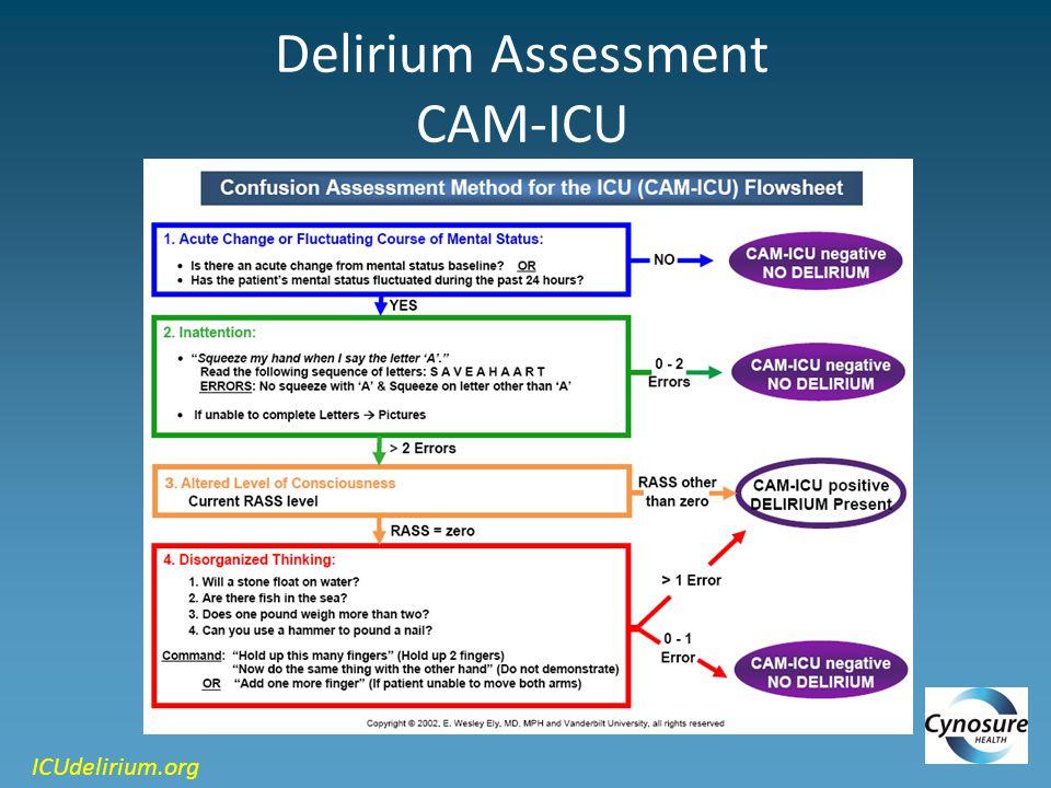 Delirium Assessment CAM-ICU