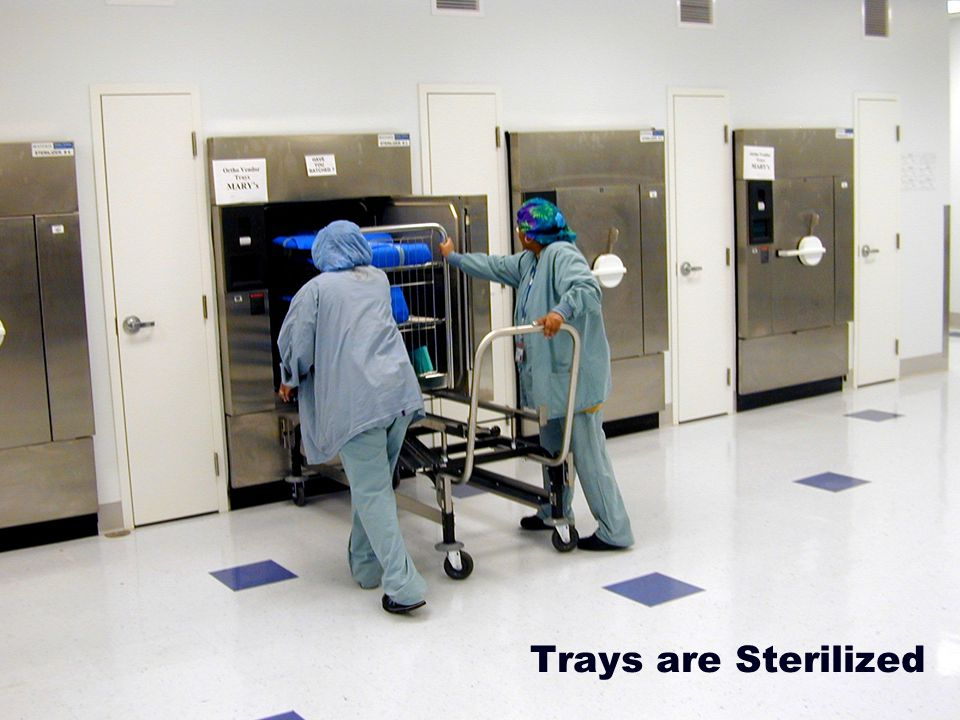 Trays are Sterilized