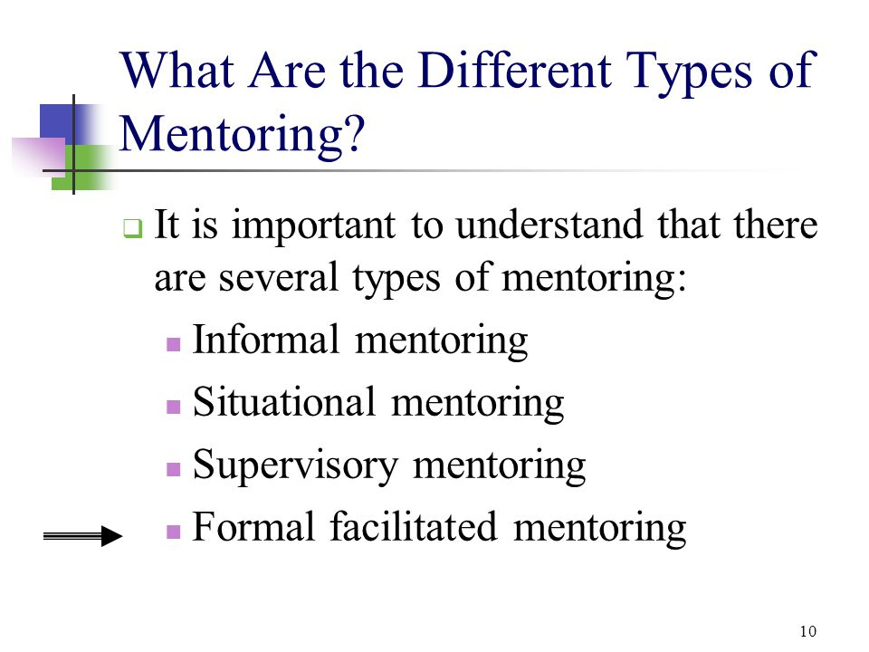 What Are the Different Types of Mentoring