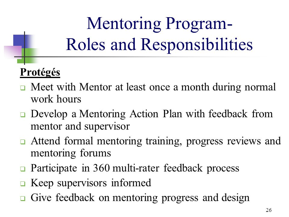 Mentoring Program- Roles and Responsibilities