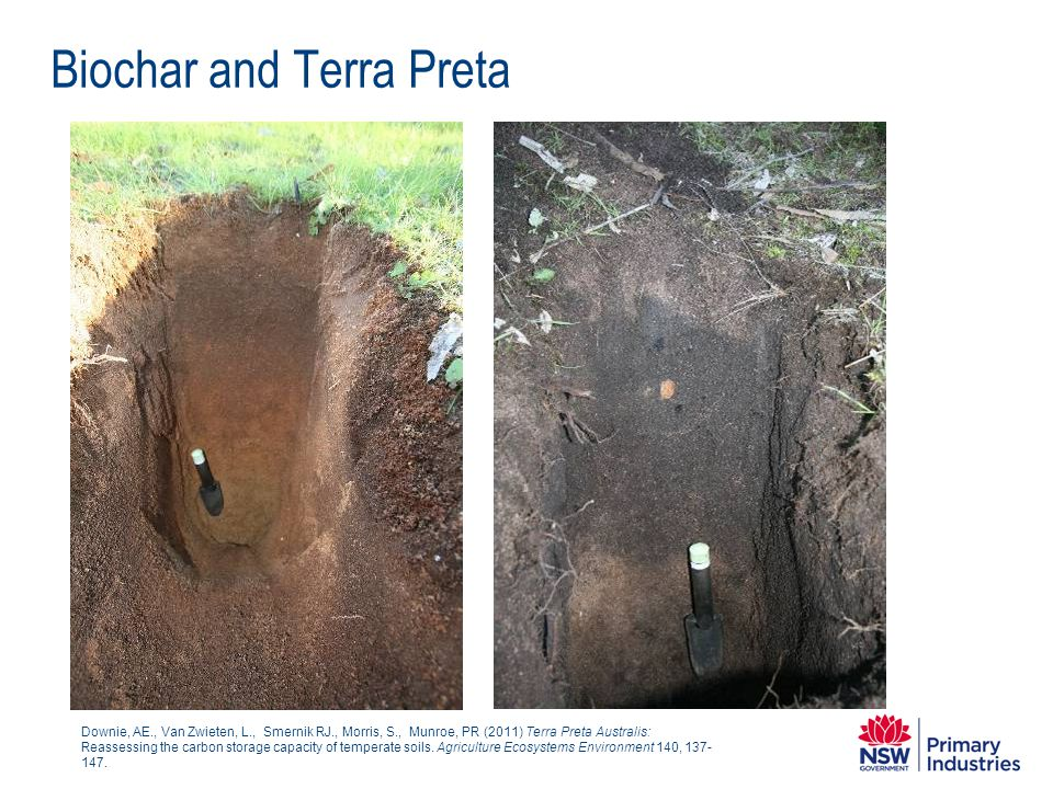 Biochar and Terra Preta