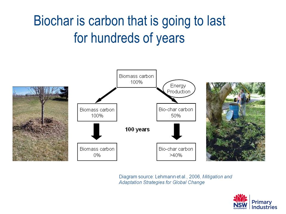 Biochar is carbon that is going to last for hundreds of years