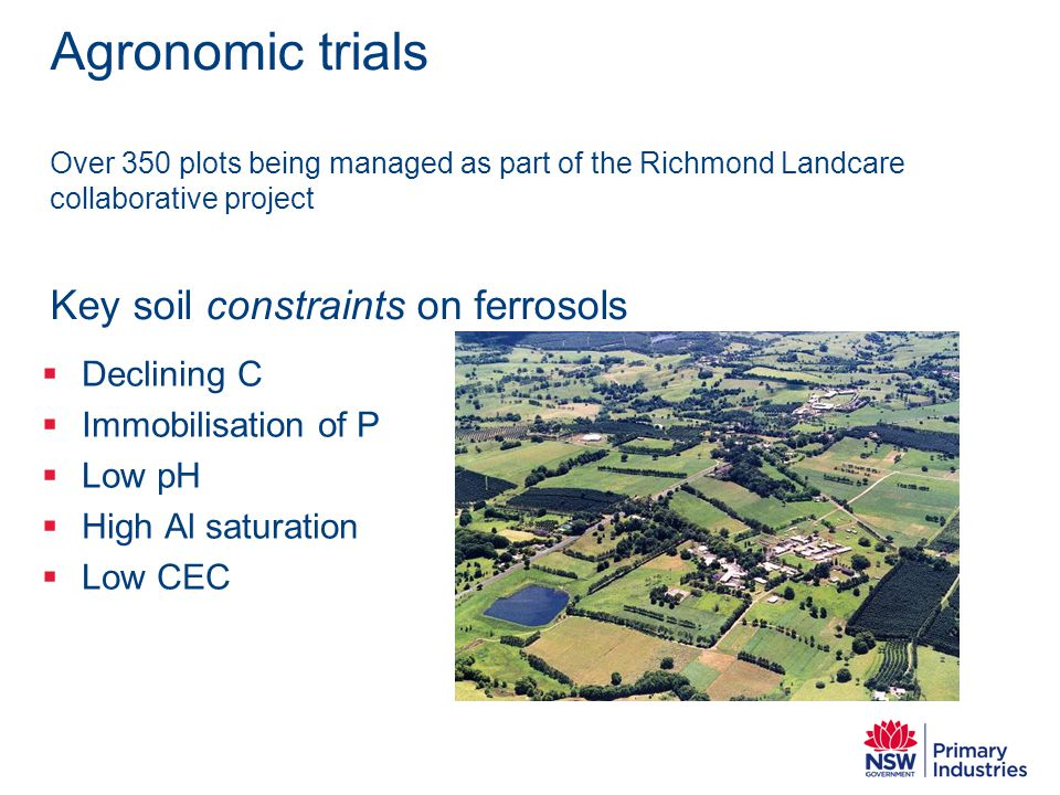 Agronomic trials Over 350 plots being managed as part of the Richmond Landcare collaborative project Key soil constraints on ferrosols