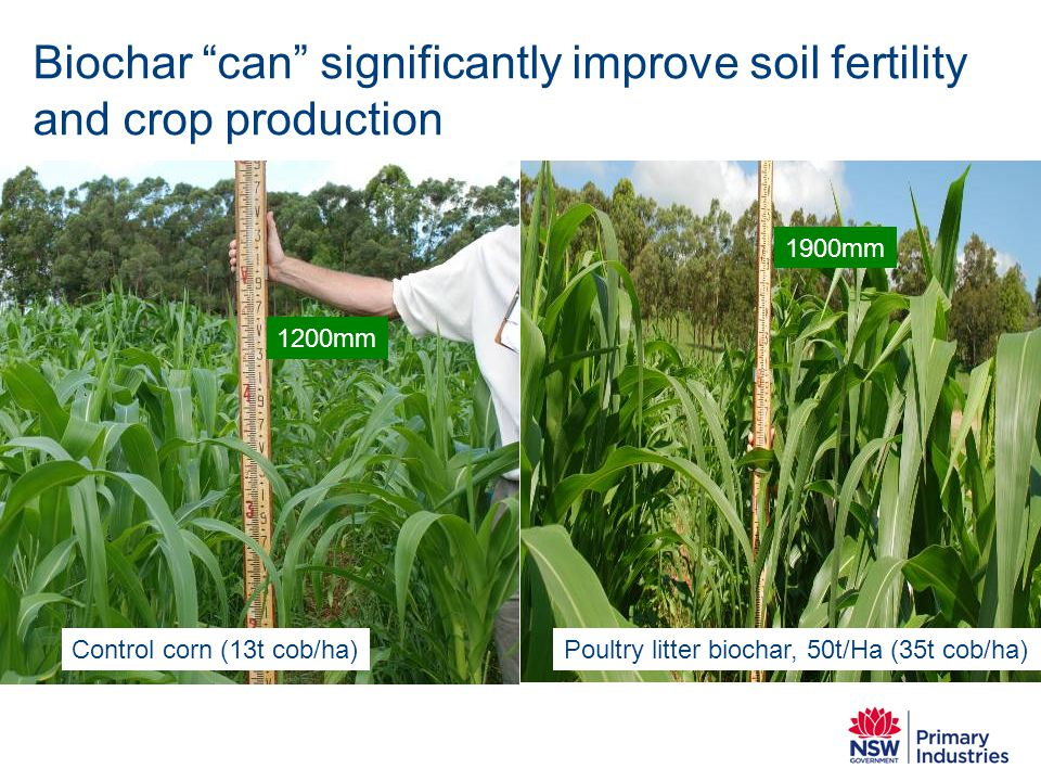 Biochar can significantly improve soil fertility and crop production
