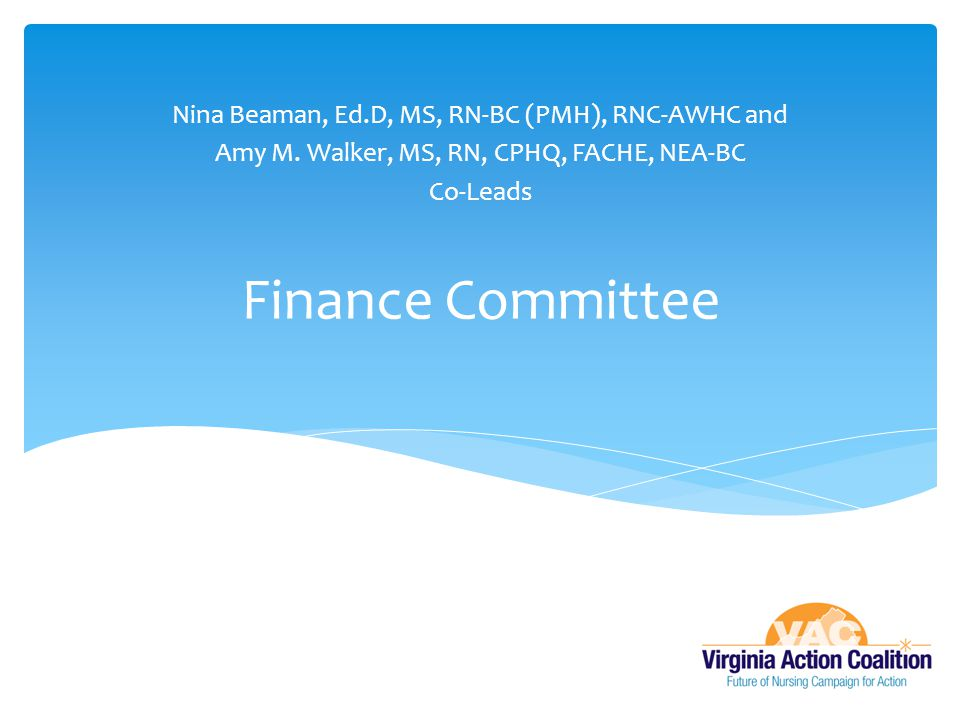 Finance Committee Nina Beaman, Ed.D, MS, RN-BC (PMH), RNC-AWHC and
