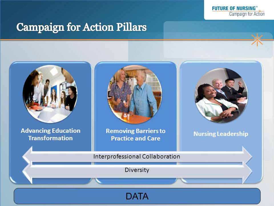 Campaign for Action Pillars