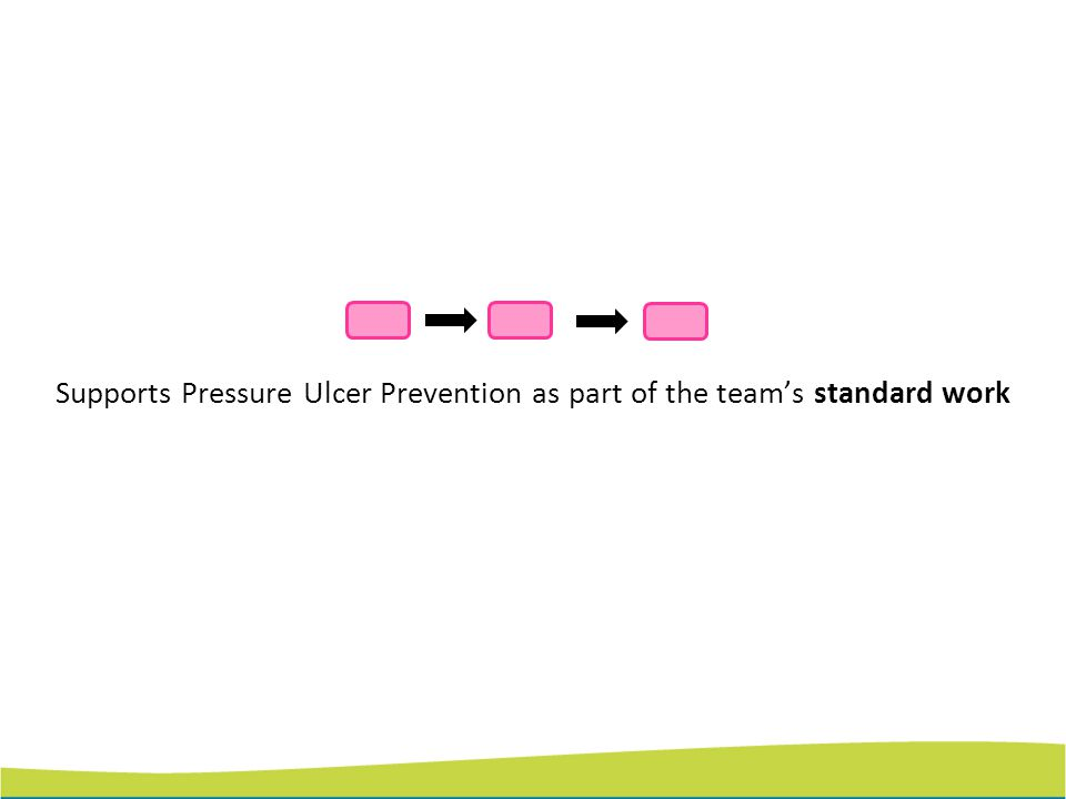Supports Pressure Ulcer Prevention as part of the team's standard work