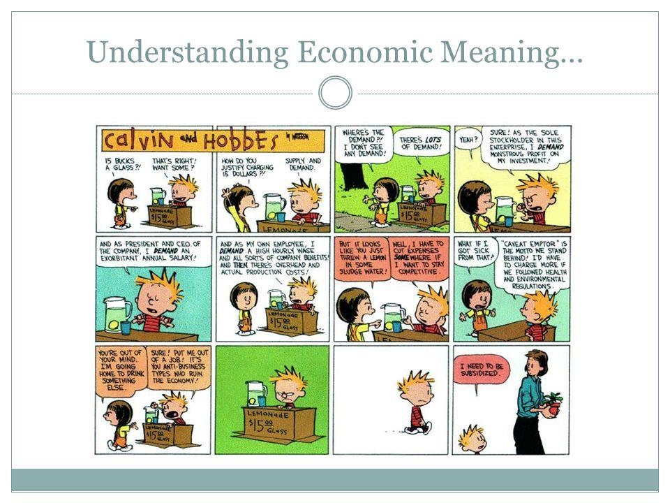 Understanding Economic Meaning…