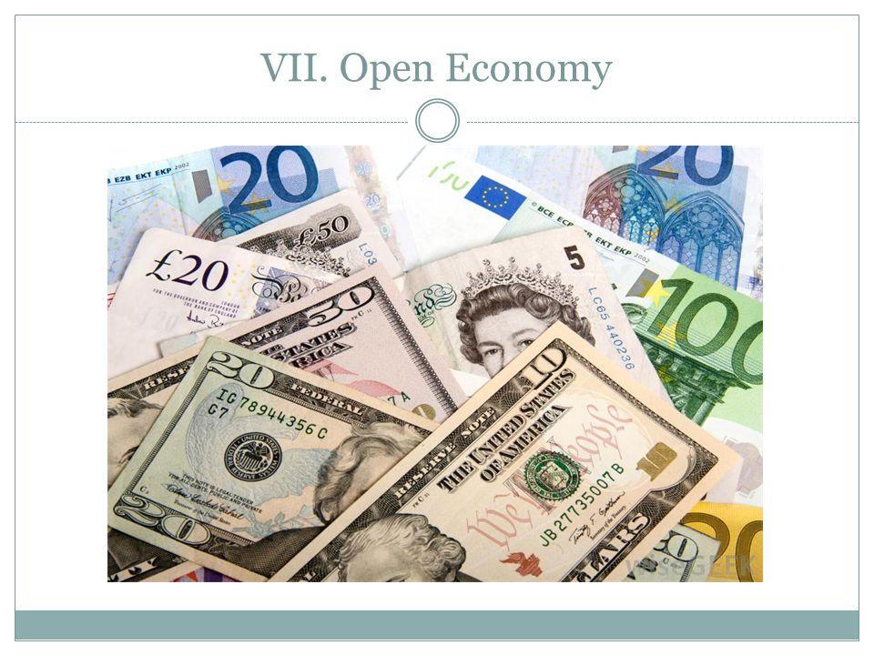VII. Open Economy