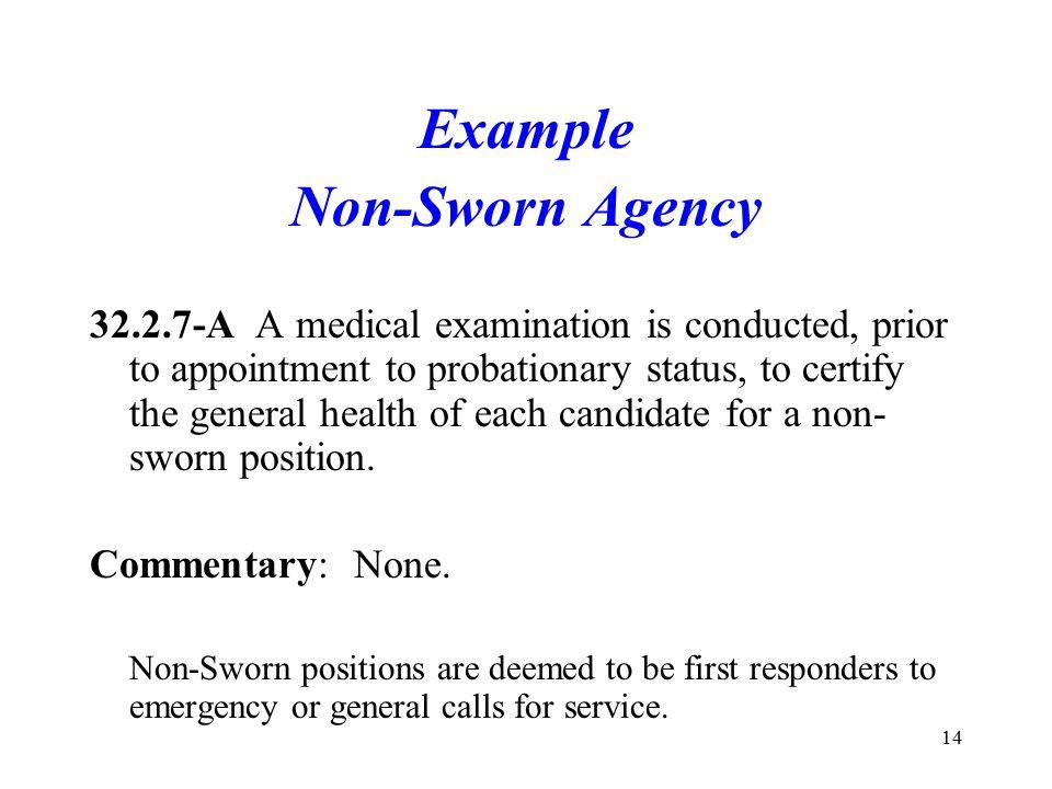 Example Non-Sworn Agency