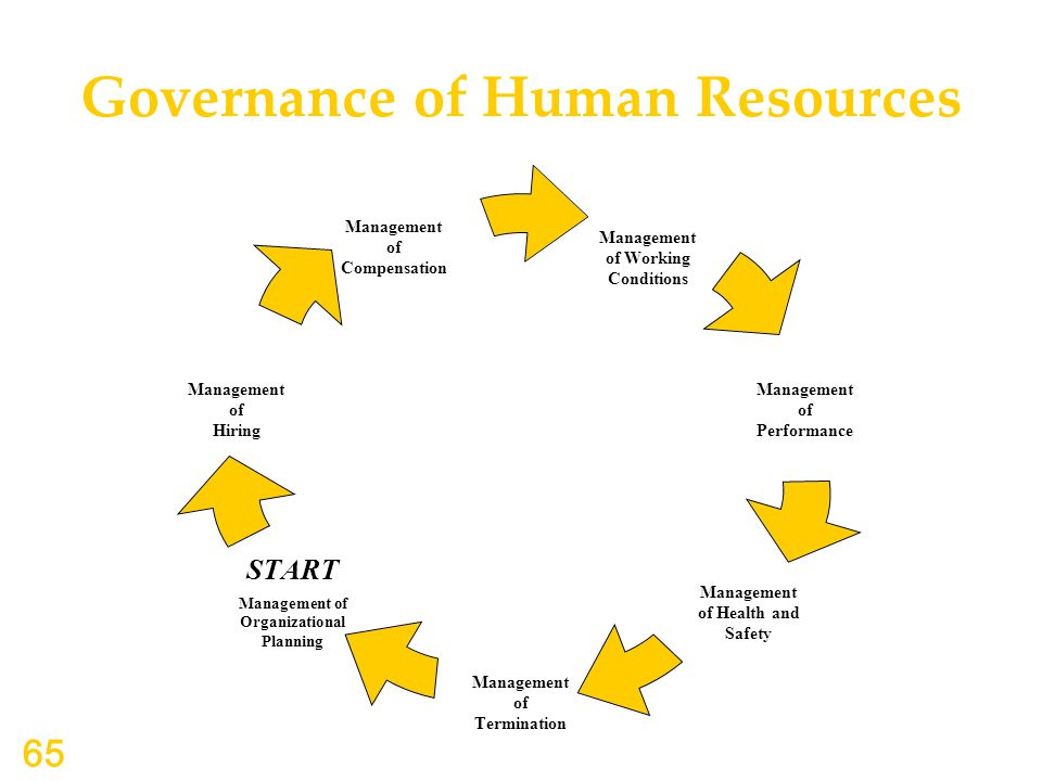 Governance of Human Resources