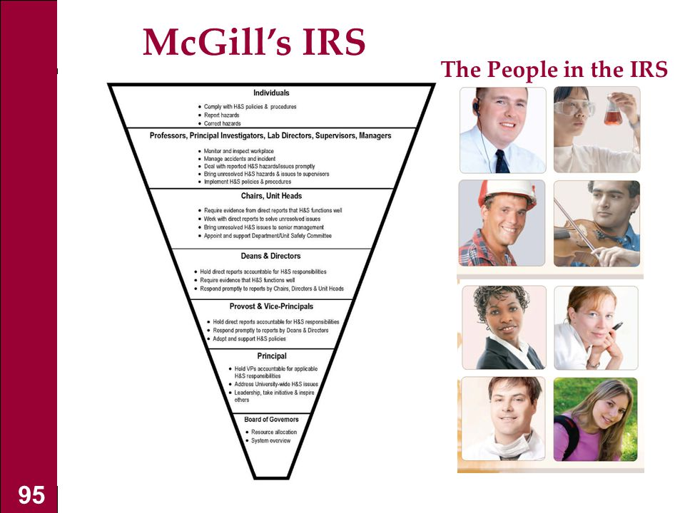 McGill's IRS The People in the IRS 95