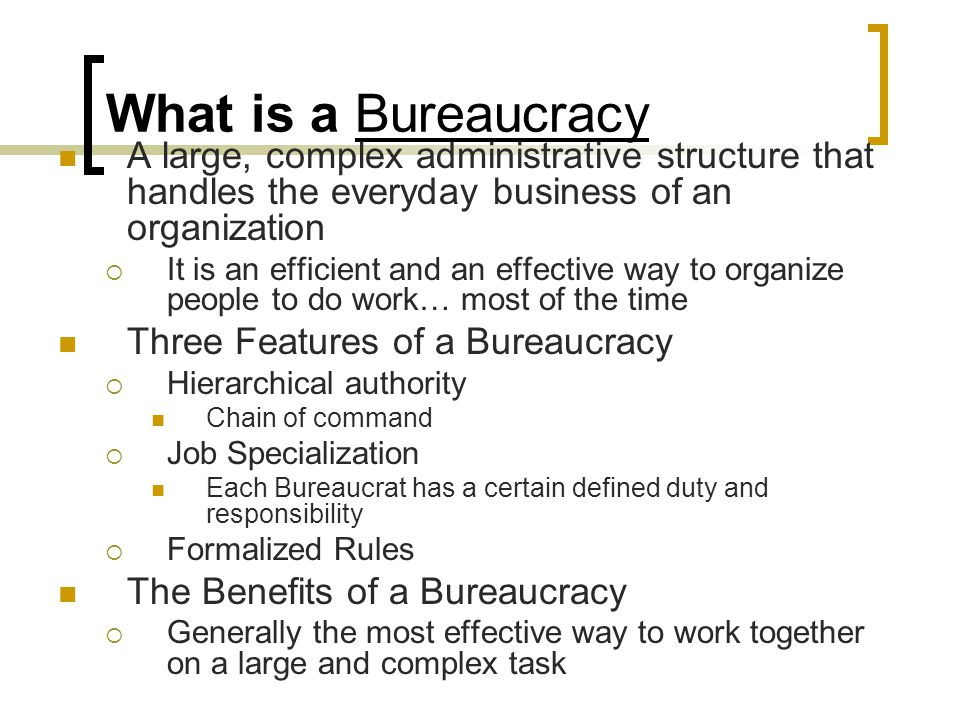 What is a Bureaucracy A large, complex administrative structure that handles the everyday business of an organization.