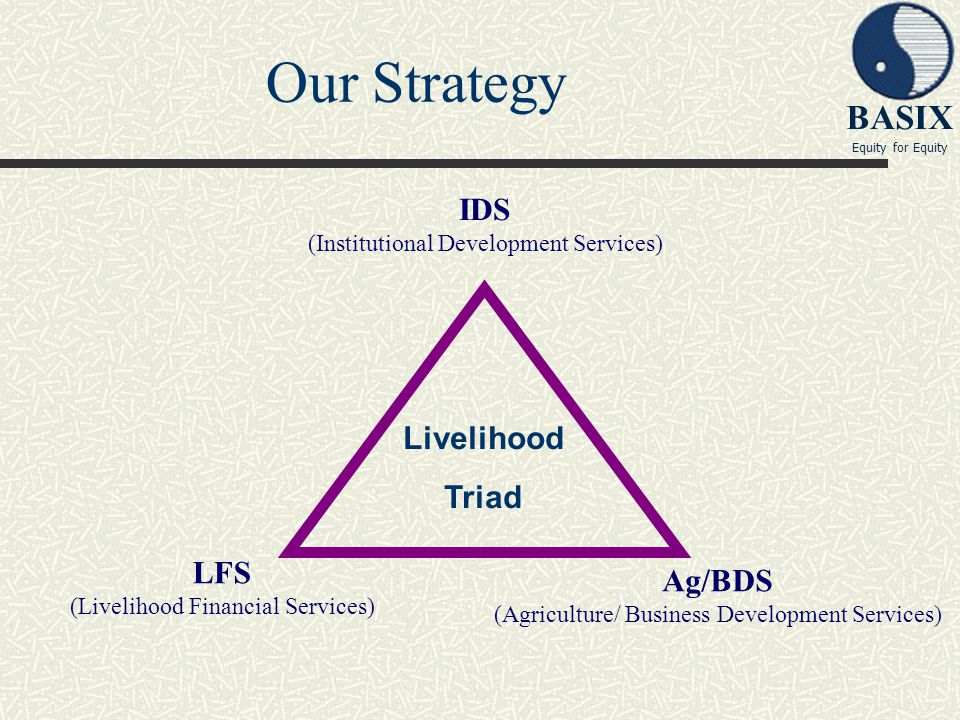 Our Strategy IDS Livelihood Triad LFS Ag/BDS