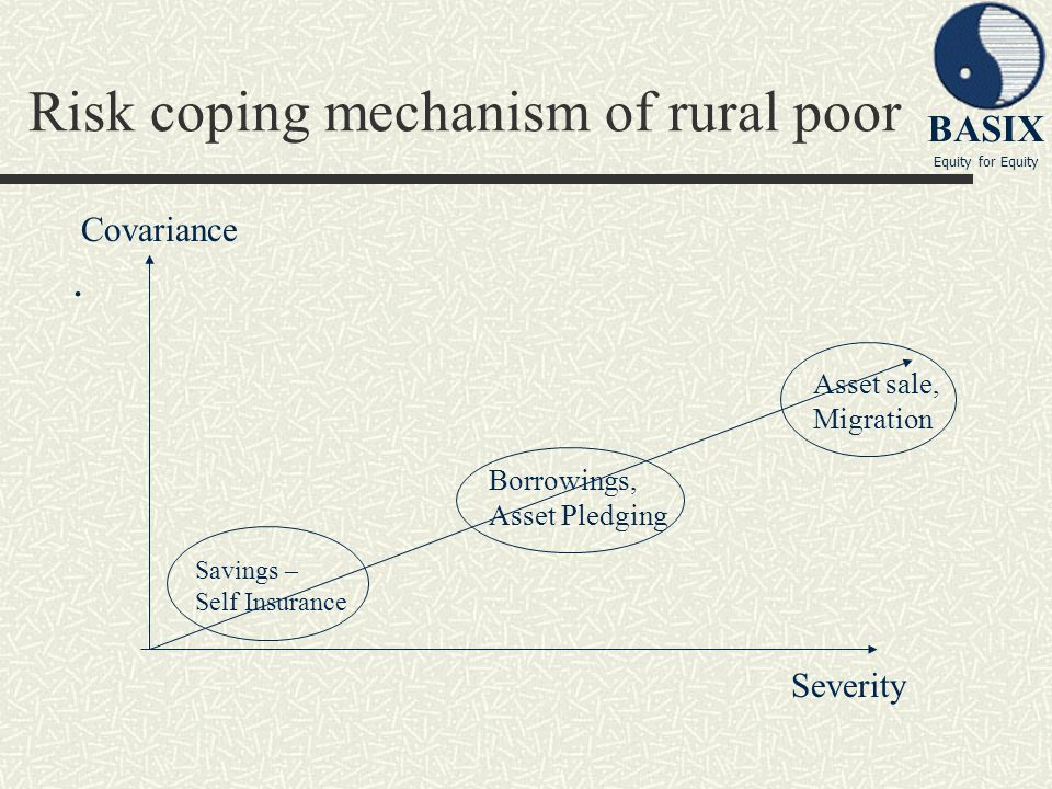 Risk coping mechanism of rural poor