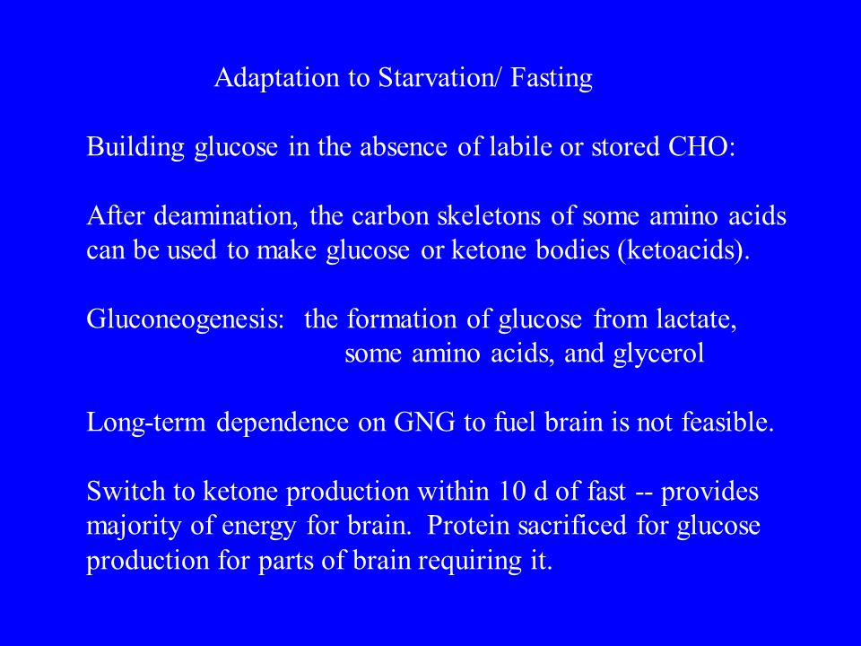Adaptation to Starvation/ Fasting
