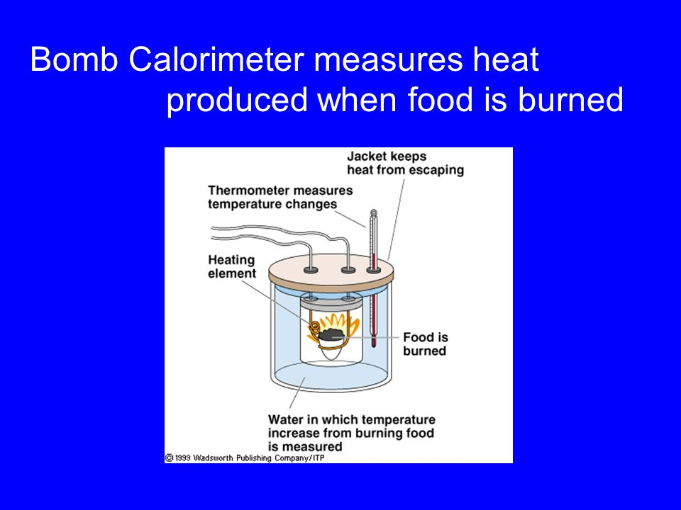 Bomb Calorimeter measures heat produced when food is burned