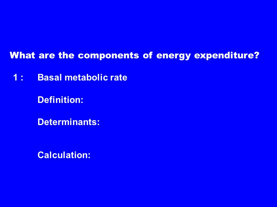 What are the components of energy expenditure