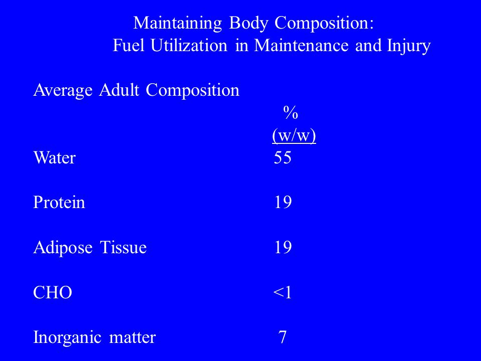 Fuel Utilization in Maintenance and Injury Average Adult Composition %