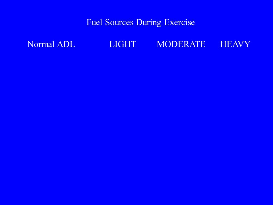 Fuel Sources During Exercise