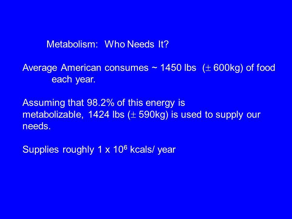 Metabolism: Who Needs It