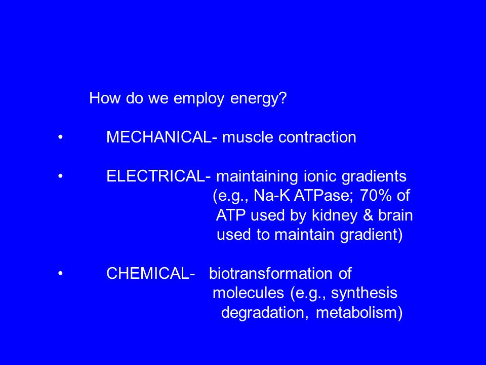 How do we employ energy • MECHANICAL- muscle contraction. • ELECTRICAL- maintaining ionic gradients.