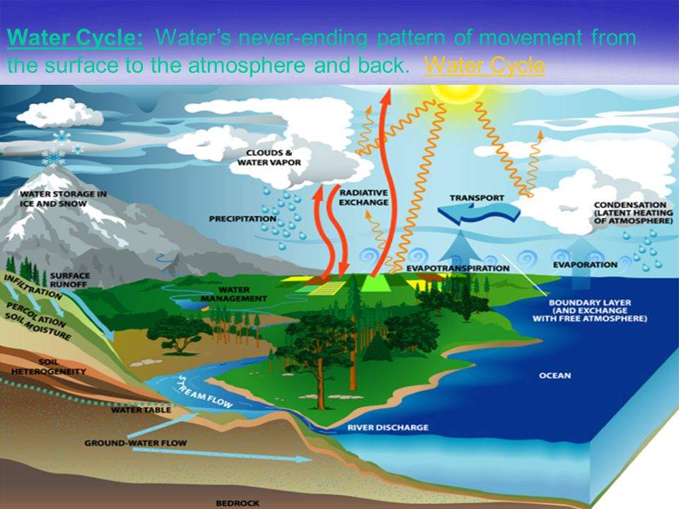 Water Cycle: Water's never-ending pattern of movement from the surface to the atmosphere and back.