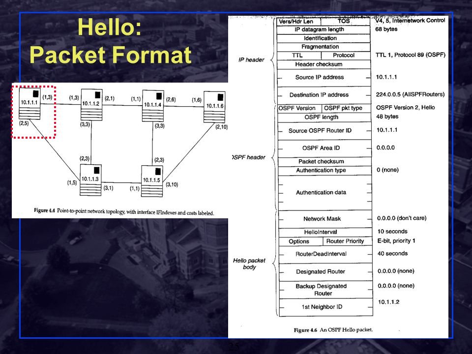 Hello: Packet Format