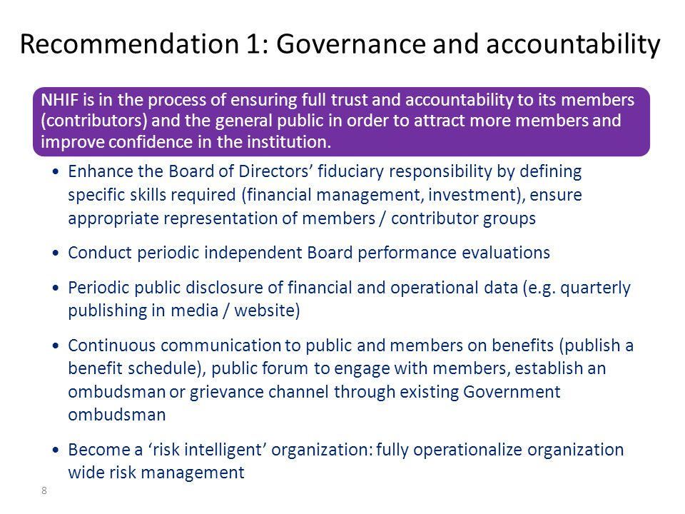 Recommendation 1: Governance and accountability
