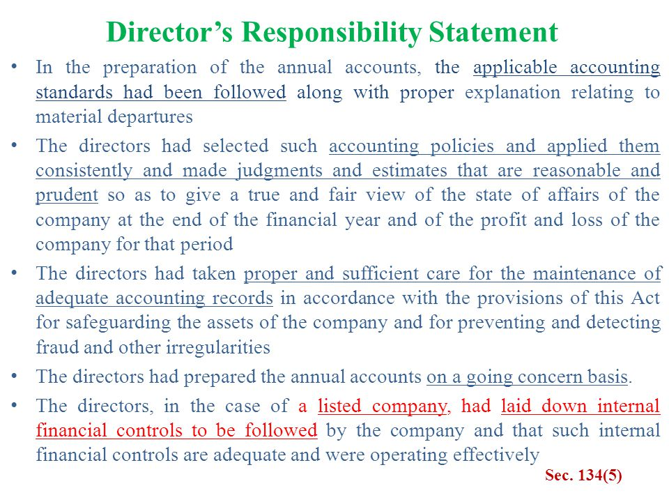 Director's Responsibility Statement
